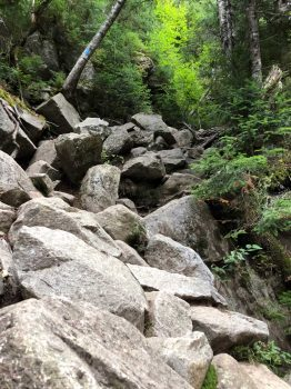 Franconia Ridge Trail Example
